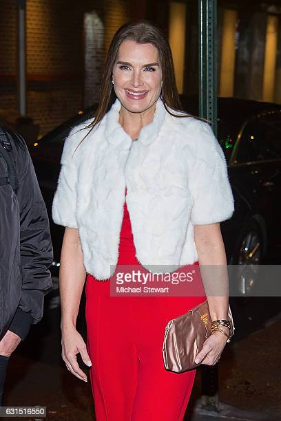 Actress Brooke Shields attends the Valentino PreFall 2017 runway show dinner at One If By Land Two If By Sea on January 11 2017 in New York City