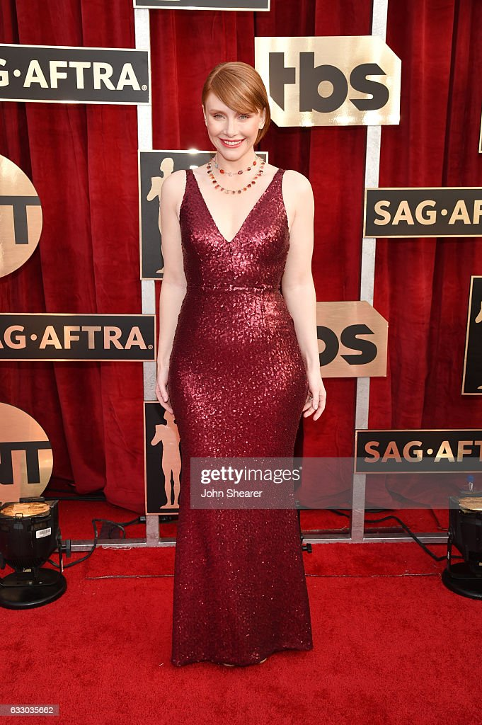 actor-sophia-bush-attends-the-23rd-annual-screen-actors-guild-awards-picture-id633035662