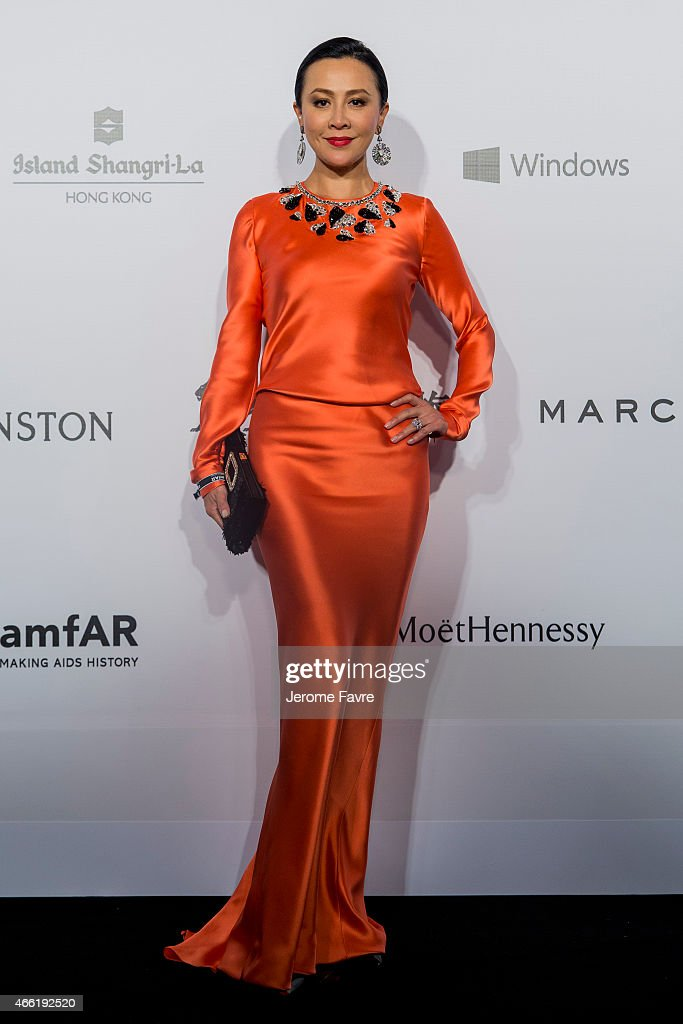 Actress Carina Lau arrives on the red carpet during the 2015 amfAR Hong Kong gala at Shaw Studios on March 14, 2015 in Hong Kong.