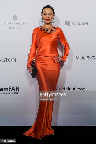 Actress Carina Lau arrives on the red carpet during the 2015 amfAR Hong Kong gala at Shaw Studios on March 14 2015 in Hong Kong