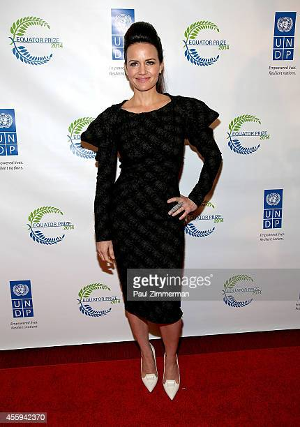 Actress Carla Gugino attends The United Nations 2014 Equator Prize Gala at Avery Fisher Hall Lincoln Center on September 22 2014 in New York City