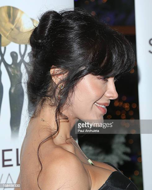 Actress Carla Ortiz attends the International Press Academy's 17th Annual Satellite Awards at InterContinental Hotel on December 16 2012 in Century...