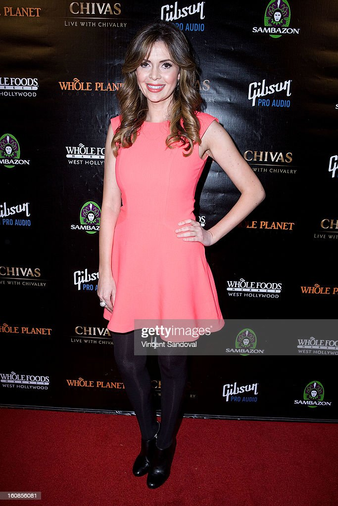 Actress Carly Steel attends The Grammy Awards: Whole Planet Foundation pre-Grammy benefit concert at East West Recording Studio on February 6, 2013 in Hollywood, California.