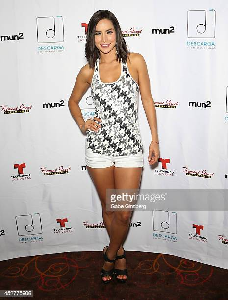 Actress Carmen Villalobos attends a press conference for Descarga 2014 at The Mirage Hotel Casino on July 26 2014 in Las Vegas Nevada