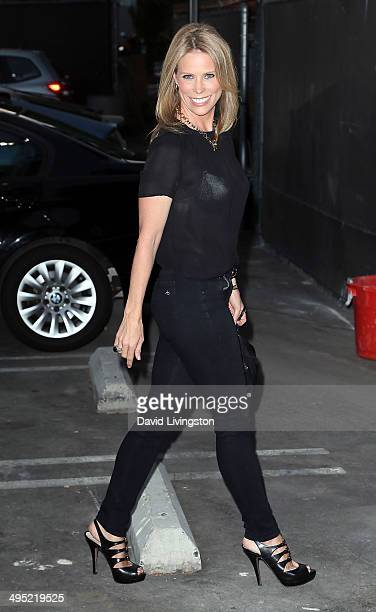 Actress Cheryl Hines attends the Groundlings 40th Anniversary Gala at Hyde Lounge on June 1 2014 in West Hollywood California