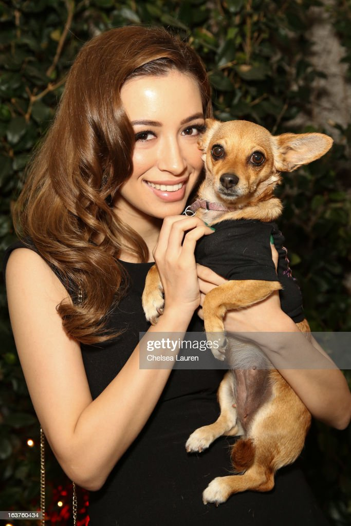 Actress Christian Serratos poses with a dog wearing Lyric Culture for PetSmart at Much Love Animal Rescue's makeovers for mutts at Peninsula Hotel on March 14, 2013 in Beverly Hills, California.