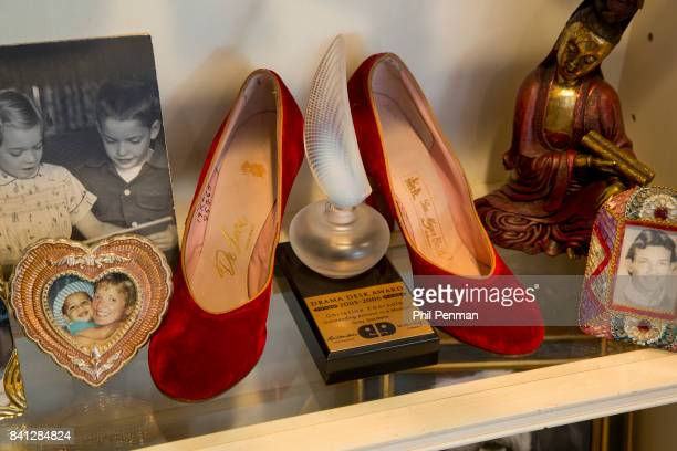 Actress Christine Ebersole's home is photographed for Closer Weekly Magazine on April 14 2016 in New Jersey Ebersole's Drama Desk Award PUBLISHED...