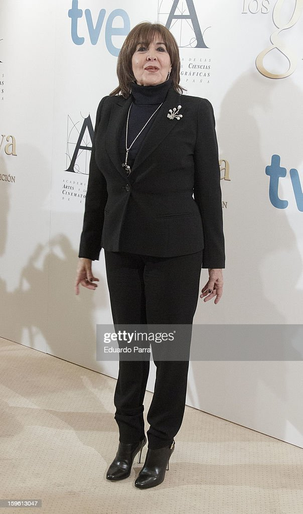 Actress Concha Velasco attends Goya honorary press conference photocall at Hesperia hotel on January 17, 2013 in Madrid, Spain.