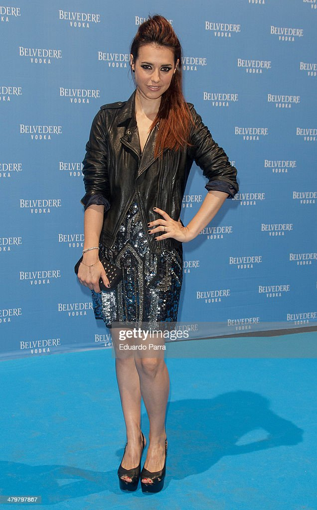 Actress Cristina Brondo attends Belvedere Vodka party photocall at Principe Pio train station on March 20, 2014 in Madrid, Spain.
