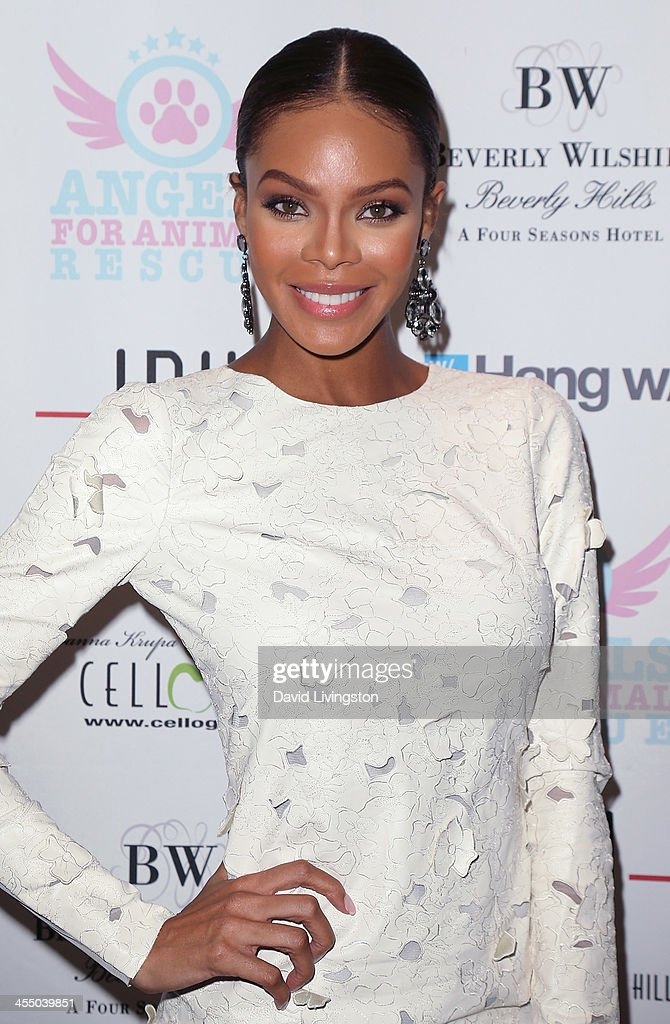 Actress Crystle Stewart attends the Angels for Animal Rescue Benefit hosted by Joanna Krupa at the Beverly Wilshire Four Seasons Hotel on December 10...
