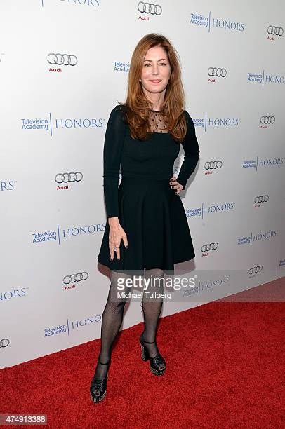 Actress Dana Delany attends the 8th Annual Television Academy Honors at Montage Beverly Hills on May 27 2015 in Beverly Hills California