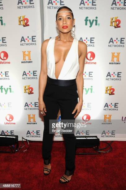 Actress Dania Ramirez attends the 2014 AE Networks Upfront on May 8 2014 in New York City