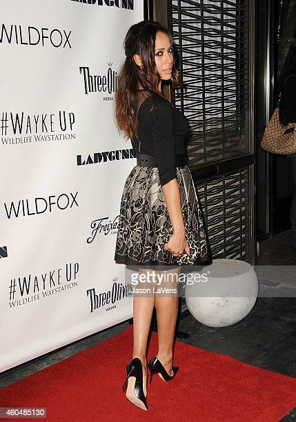 Actress Dania Ramirez attends the Wayke Up fundraiser at Sofitel Hotel on December 14 2014 in West Hollywood California