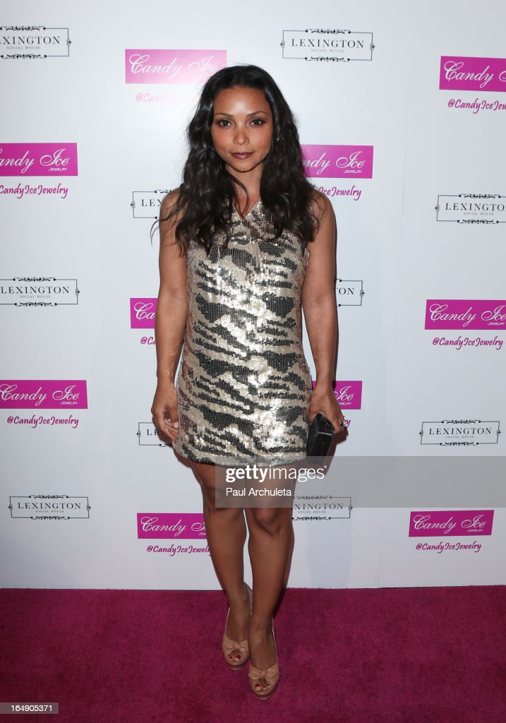 Actress Danielle Nicolet attends the Fire & Ice Gala Benefiting Fresh2o at the Lexington Social House on March 28, 2013 in Hollywood, California.