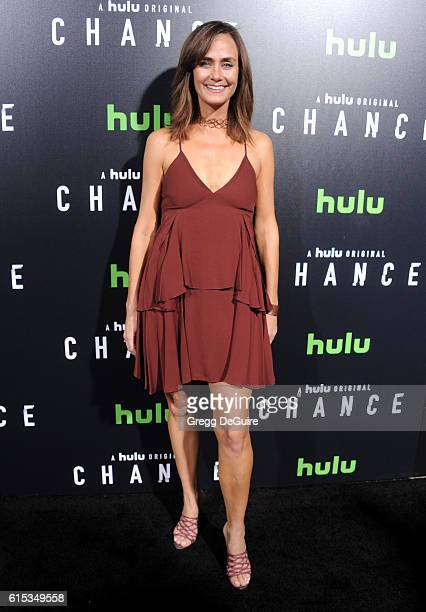 Actress Diane Farr arrives at the premiere of Hulu's 'Chance' at Harmony Gold Theatre on October 17 2016 in Los Angeles California