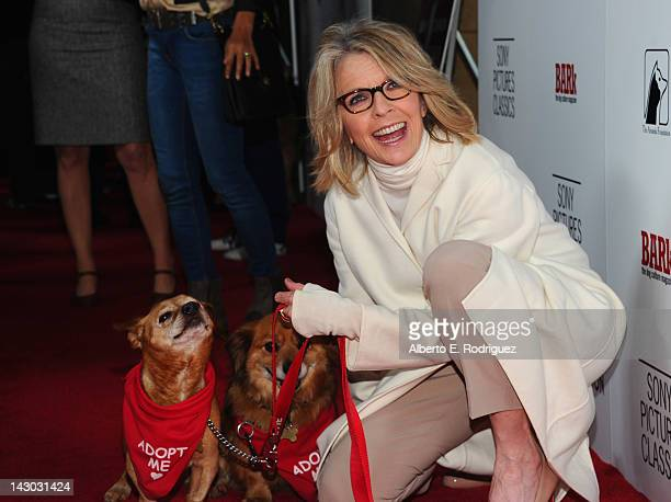 Actress Diane Keaton attends the Los Angeles premiere of Sony Pictures Classics' 'Darling Companion' at the Egyptian Theatre on April 17 2012 in...