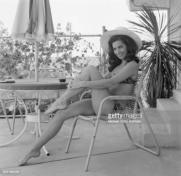 Edy Williams Pictures Getty Images