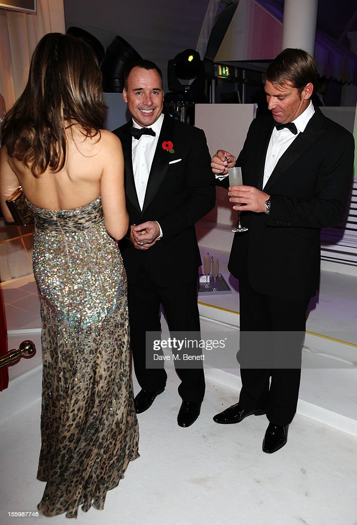 Actress Elizabeth Hurley, David Furnish and ex-cricketer Shane Warne arrive at the Grey Goose Winter Ball at Battersea Power Station on November 10, 2012 in London, England.