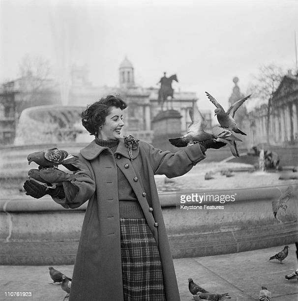 Actress Elizabeth Taylor surrounded by pigeons in Trafalgar Square London November 1948