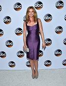 Actress Emily VanCamp arrives at the ABC TCA 'Winter Press Tour 2015' Red Carpet on January 14 2015 in Pasadena California