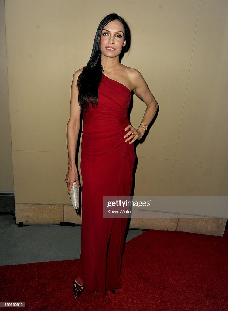 Actress Famke Janssen attends the 65th Annual Directors Guild Of America Awards at Ray Dolby Ballroom at Hollywood & Highland on February 2, 2013 in Los Angeles, California.