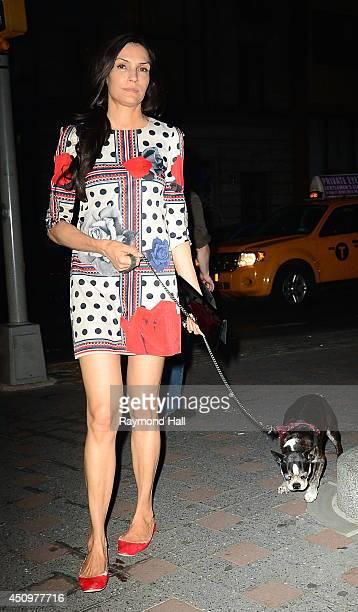Actress Famke Janssen is seen walking her dog in Soho on June 20 2014 in New York City