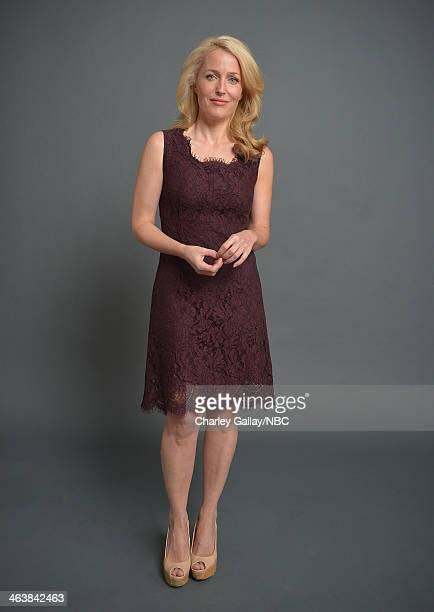 Actress Gillian Anderson attends the 2014 NBCUniversal TCA Winter Press Tour Portraits at Langham Hotel on January 19 2014 in Pasadena California
