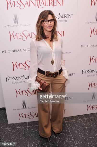 Actress Gina Gershon attends the Yves Saint Laurent Couture Palette The Cinema Society premiere of The Weinstein Company's 'Yves Saint Laurent' at...