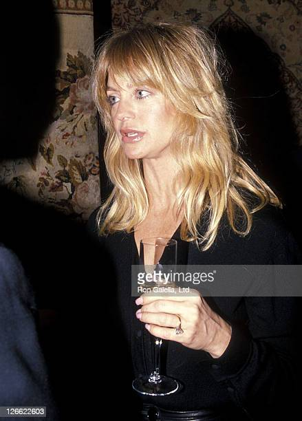 Actress Goldie Hawn attends the 36th Annual Winter Antiques Show to Benefit the East Side House Settlement on January 19 1990 at Seventh Regiment...