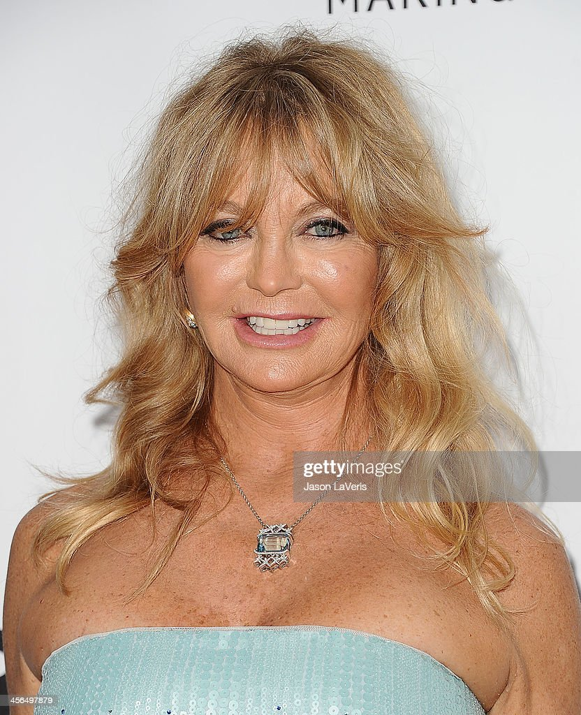 Actress Goldie Hawn attends the amfAR Inspiration Gala at Milk Studios on December 12, 2013 in Hollywood, California.
