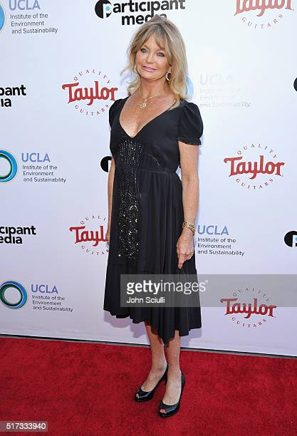 Actress Goldie Hawn attends UCLA Institute of the Environment and Sustainability annual Gala on March 24 2016 in Beverly Hills California
