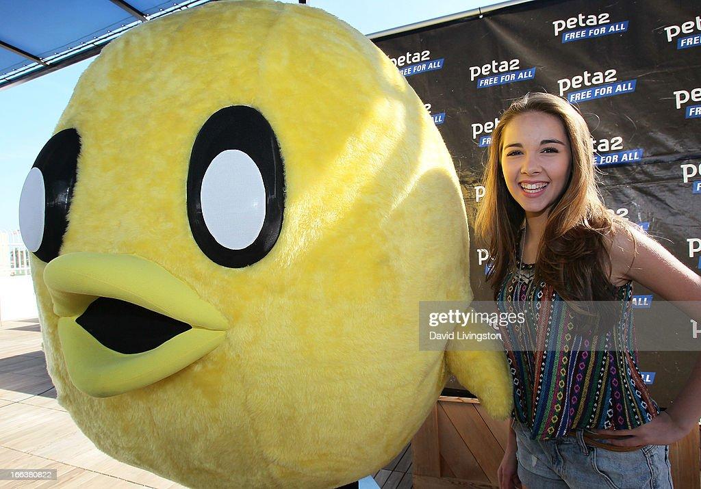Haley Pullos actress