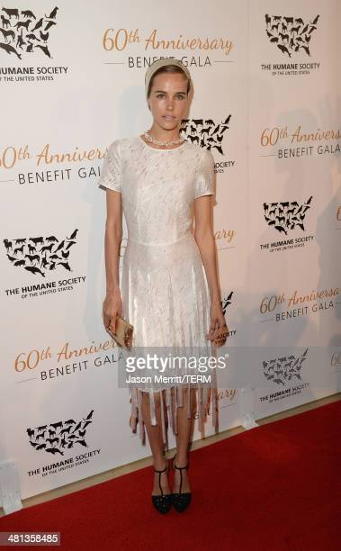 Actress Isabel Lucas attends the Humane Society of The United States 60th Anniversary Gala at The Beverly Hilton Hotel on March 29 2014 in Beverly...
