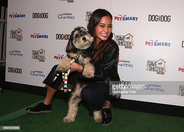 Actress Jamie Chung and her rescue dog Ewok attend the launch of DOG for DOG movement Buy One Give One to help feed animals in need at The Amanda...