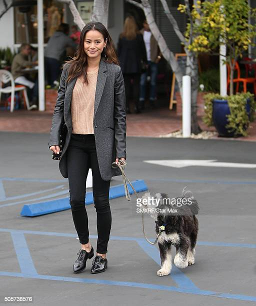 Actress Jamie Chung is seen on January 19 2016 in Los Angeles California