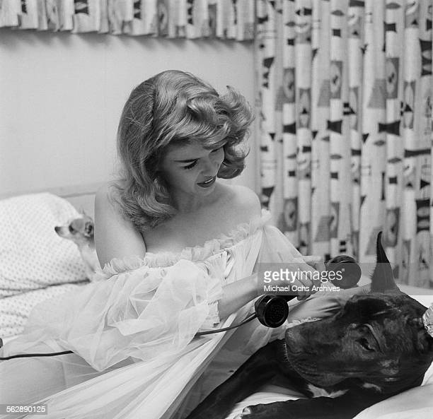 Actress Jayne Mansfield poses with her dog in bed at home in Los AngelesCalifornia