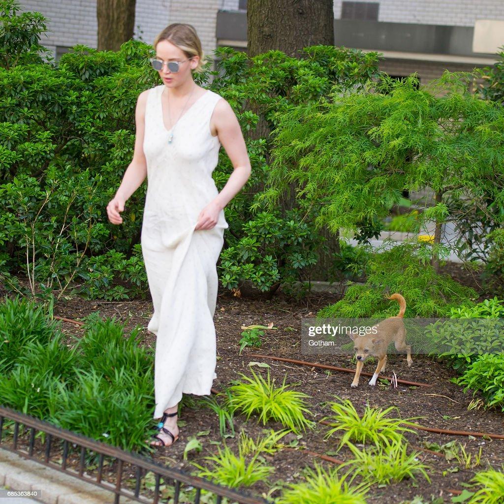 Image result for Jennifer Lawrence 2017 dog