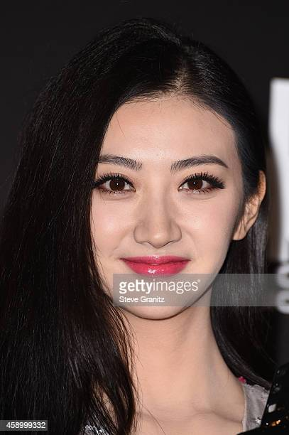 Actress Jing Tian poses in the press room during the 18th Annual Hollywood Film Awards at The Palladium on November 14 2014 in Hollywood California