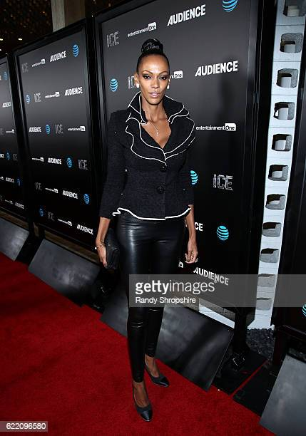 Actress Judith Shekoni attends the premiere of ATT Audience Network's 'ICE' at ArcLight Hollywood on November 9 2016 in Hollywood California