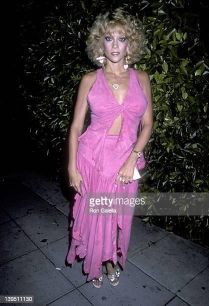 Judy Landers Nude Photos 46