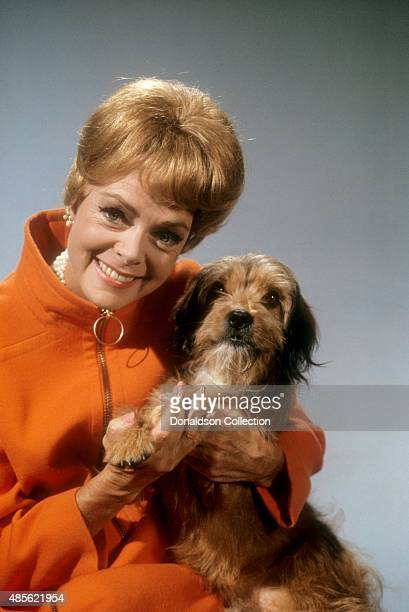 Actress June Lockhart poses for a portrait holding a dog named Higgins who would later become Benji in New York