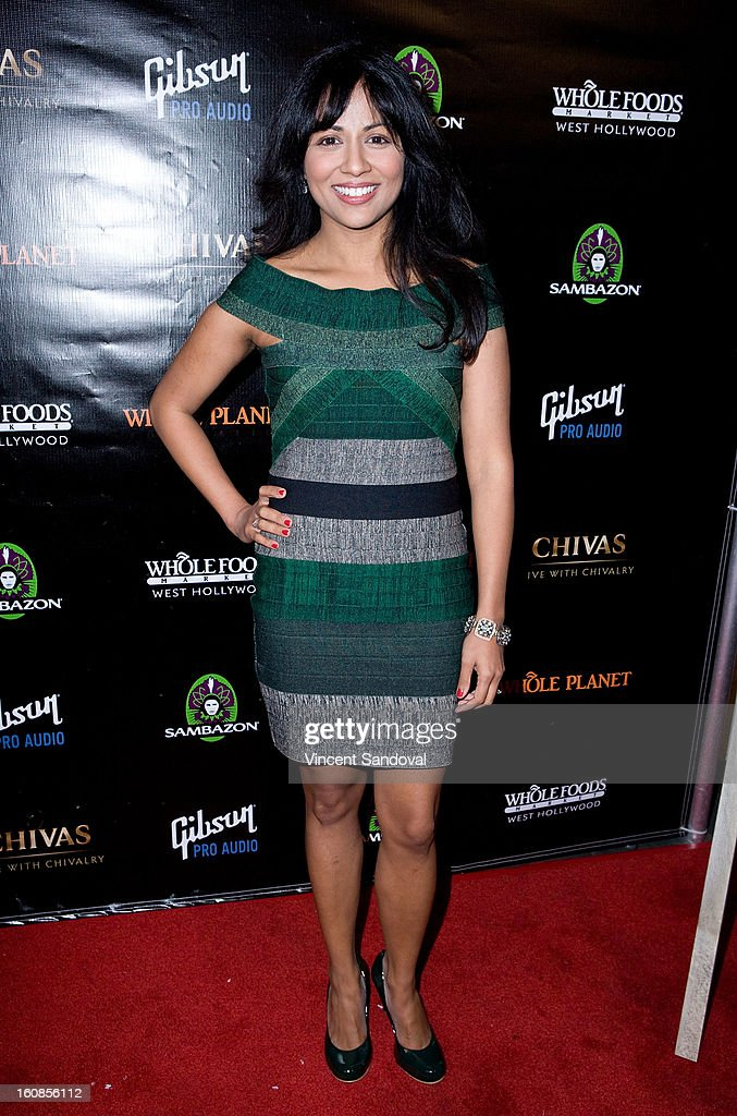 Actress Karen David attends The Grammy Awards: Whole Planet Foundation pre-Grammy benefit concert at East West Recording Studio on February 6, 2013 in Hollywood, California.