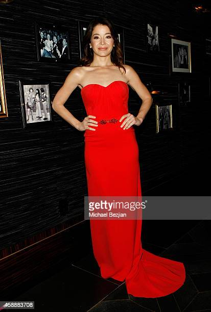 Actress Katherine Castro attends Katherine Castro Receives Hollywood FAME Awards at Avalon on November 12 2014 in Hollywood California