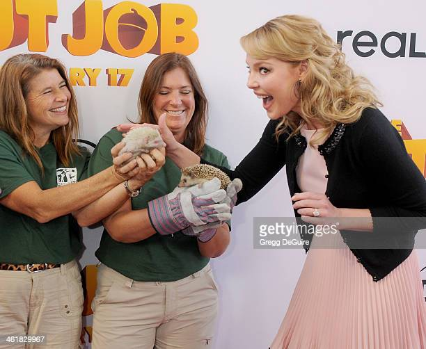 Actress Katherine Heigl arrives at the Los Angeles premiere of 'The Nut Job' at Regal Cinemas LA Live on January 11 2014 in Los Angeles California