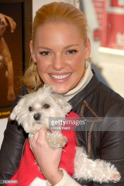 Actress Katherine Heigl poses at the Third Annual Pedigree Adoption Drive in Times Square on February 8 2007 in New York City