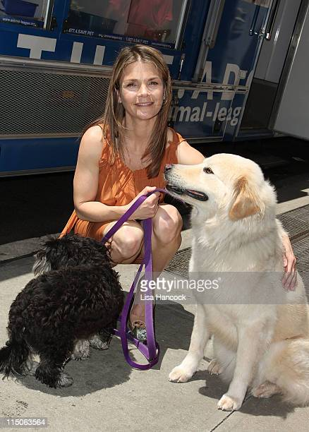 Actress Kathryn Erbe and her two adopted dogs attend the North Shore Animal League Muttigrees Movement press conference at The Algonquin Hotel on...