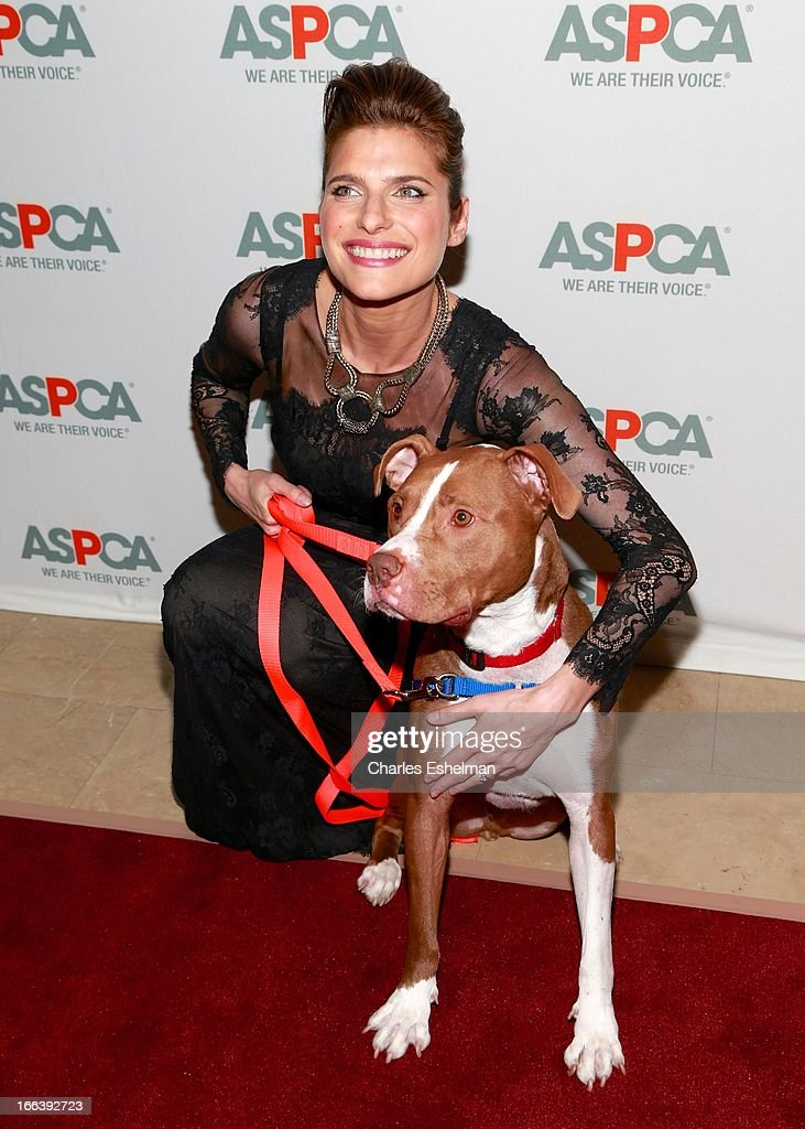 Actress Lake Bell attends the 16th Annual ASPCA Bergh Ball at The Plaza Hotel on April 11, 2013 in New York City.