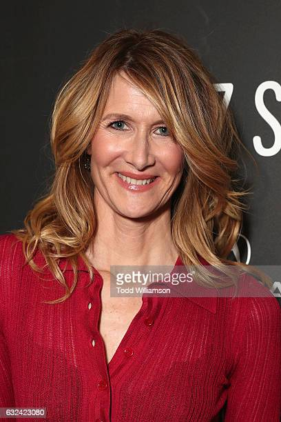 Actress Laura Dern attends the Sundance Premiere of FOX Searchlights' 'Wilson' at Eccles Center Theatre on January 22 2017 in Park City Utah