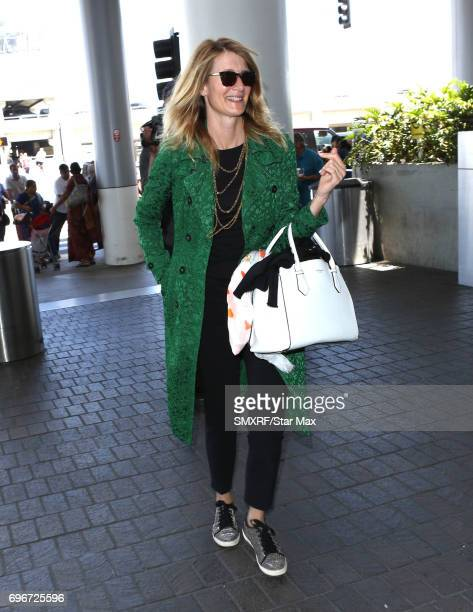 Actress Laura Dern is seen on June 16 2017 in Los Angeles California