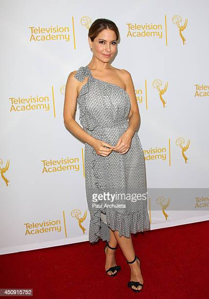 Actress Lisa Locicero attends the Daytime Emmy Nominee Reception at The London West Hollywood on June 19 2014 in West Hollywood California